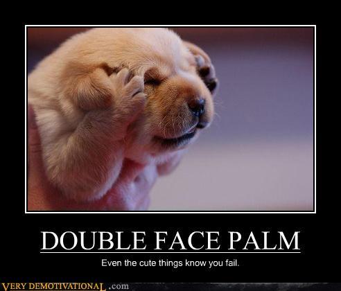 double-facepalm.jpg